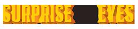 sye_logo (1)